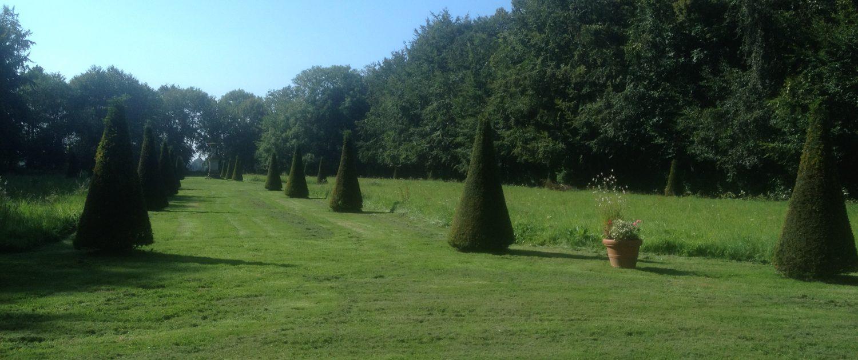 Parterre du jardin de Bretteville DR